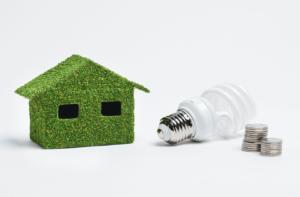 energy-savings-green-house-light-bulb-coins