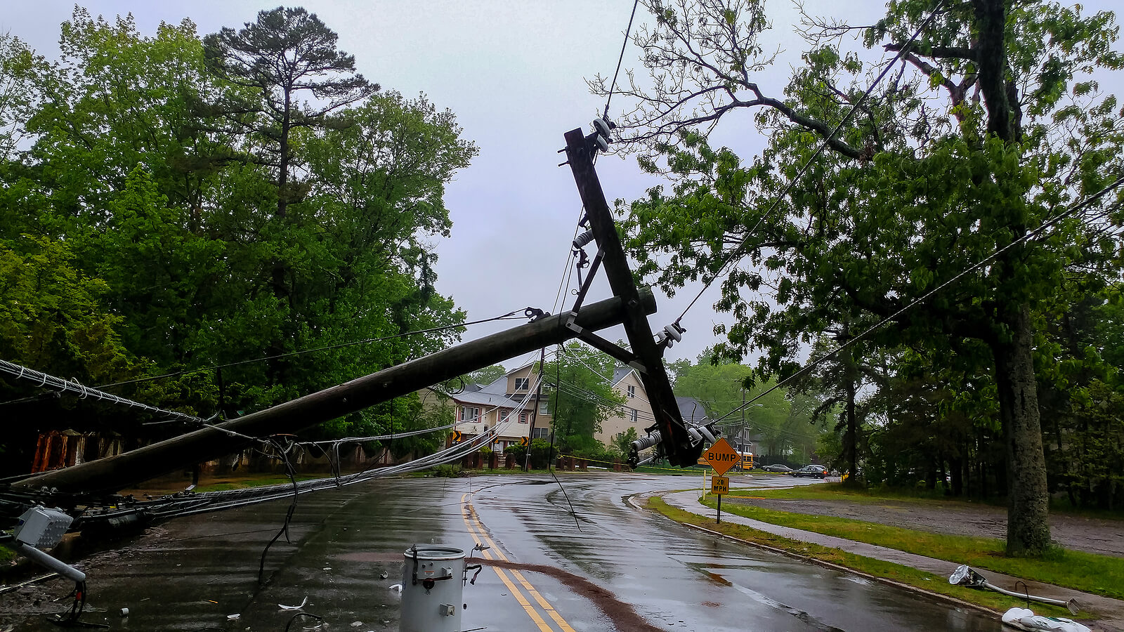 Safety Guide in event of Downed Power Line