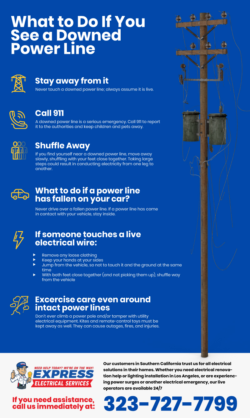 What to Do If You See A Downed Power Line